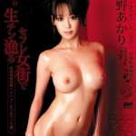 Watch S Model 33 DVD – All Akari Asagiri videos