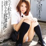 Watch S Model 20 DVD – All Mariru Amamiya videos